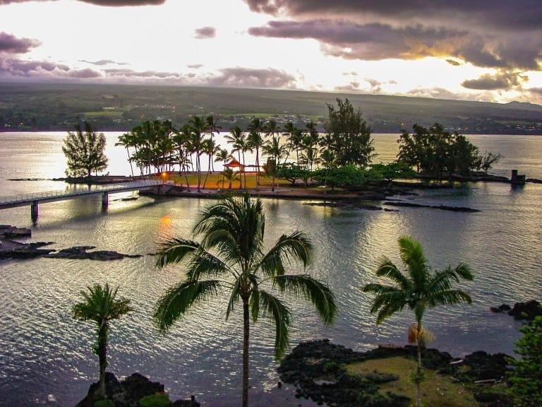 Hawaii palm coconut island