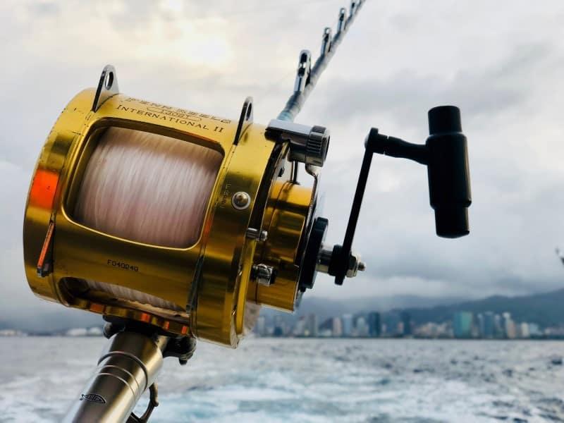 Fishing reel - Fishing line