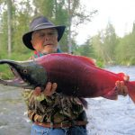 Salmon catching - Most Popular Fish For Fly Fishing