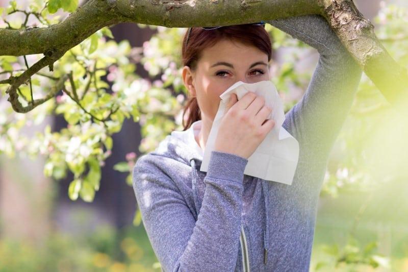 Simptoms hay fever
